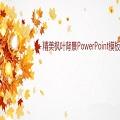 精美枫叶背景ppt模板免费版