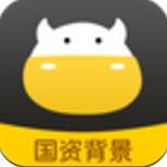 金有金安卓版v3.0.0