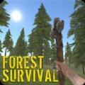 失落森林生存游戏