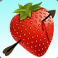 水果射箭游戏