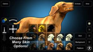 模拟忠犬安卓版图1