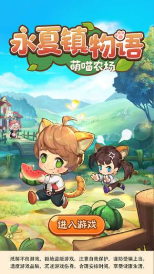 永夏镇物语游戏图1